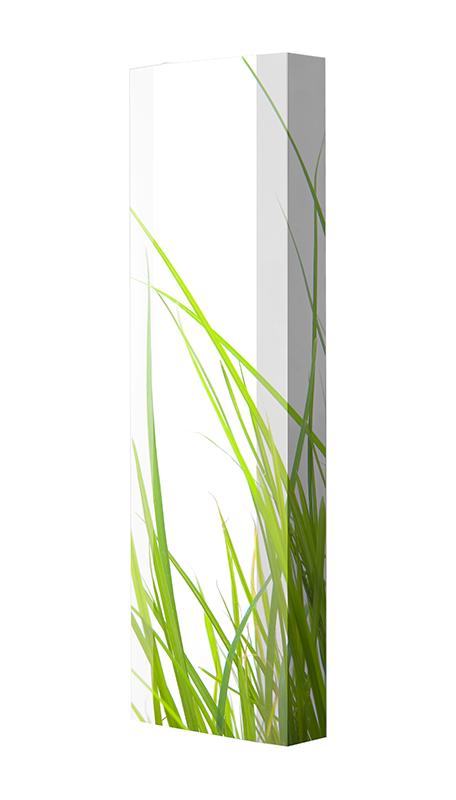Schuhschrank FLASH Motivschrank Single F01 Gräser weiß