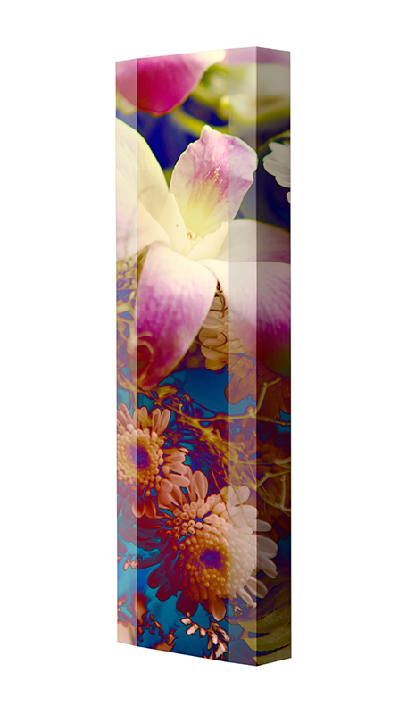 Schuhschrank FLASH Motivschrank Single F103 Blumen weiß