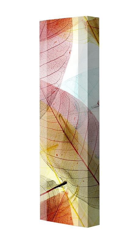 Schuhschrank FLASH Motivschrank Single F109 Blätter weiß