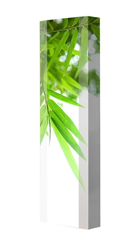 Schuhschrank FLASH Motivschrank Single F11 Blätter weiß