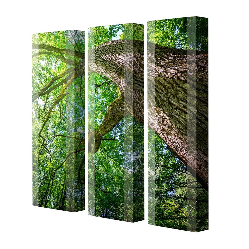 Schuhschrank FLASH Motivschrank Trio FT104 Baum weiß 3er Set