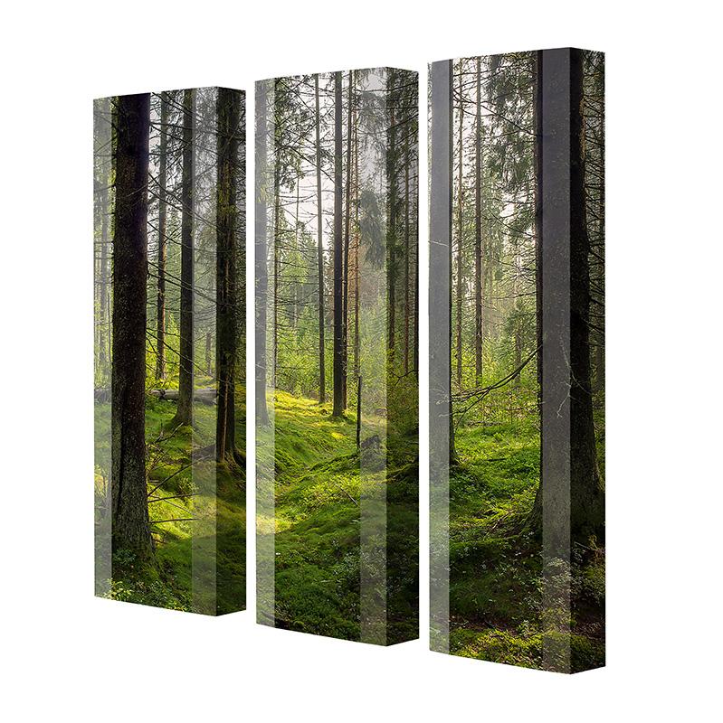 Schuhschrank FLASH Motivschrank Trio FT108 Wald weiß 3er Set