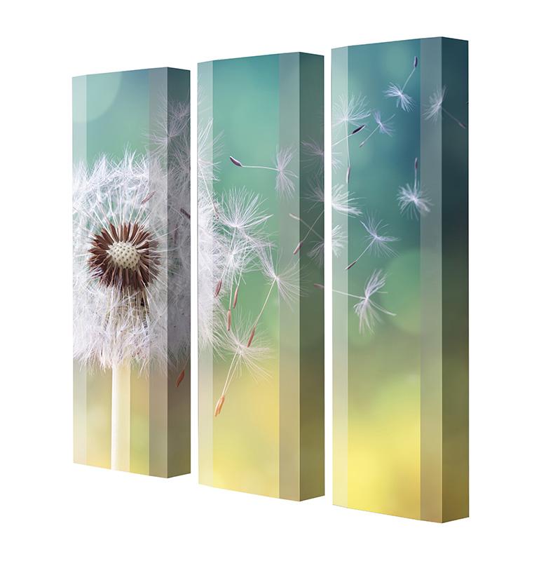 Schuhschrank FLASH Motivschrank Trio FT121 Pusteblume weiß 3er Set