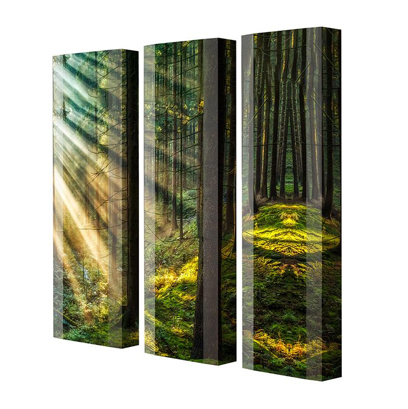 Schuhschrank FLASH Motivschrank Trio FT122 Wald weiß 3er Set