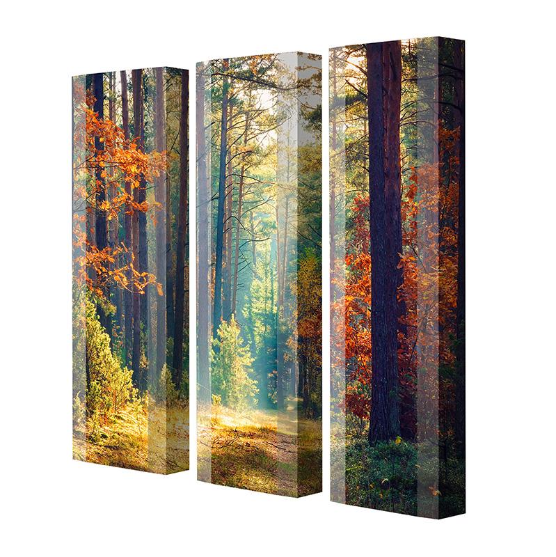 Schuhschrank FLASH Motivschrank Trio FT142 Wald weiß 3er Set
