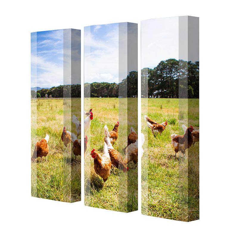 Schuhschrank FLASH Motivschrank Trio FT157 Hühner weiß 3er Set