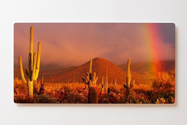 Magnettafel BACKLIGHT 120x60cm Motiv-Wandbild M10 Wüste Kakteen
