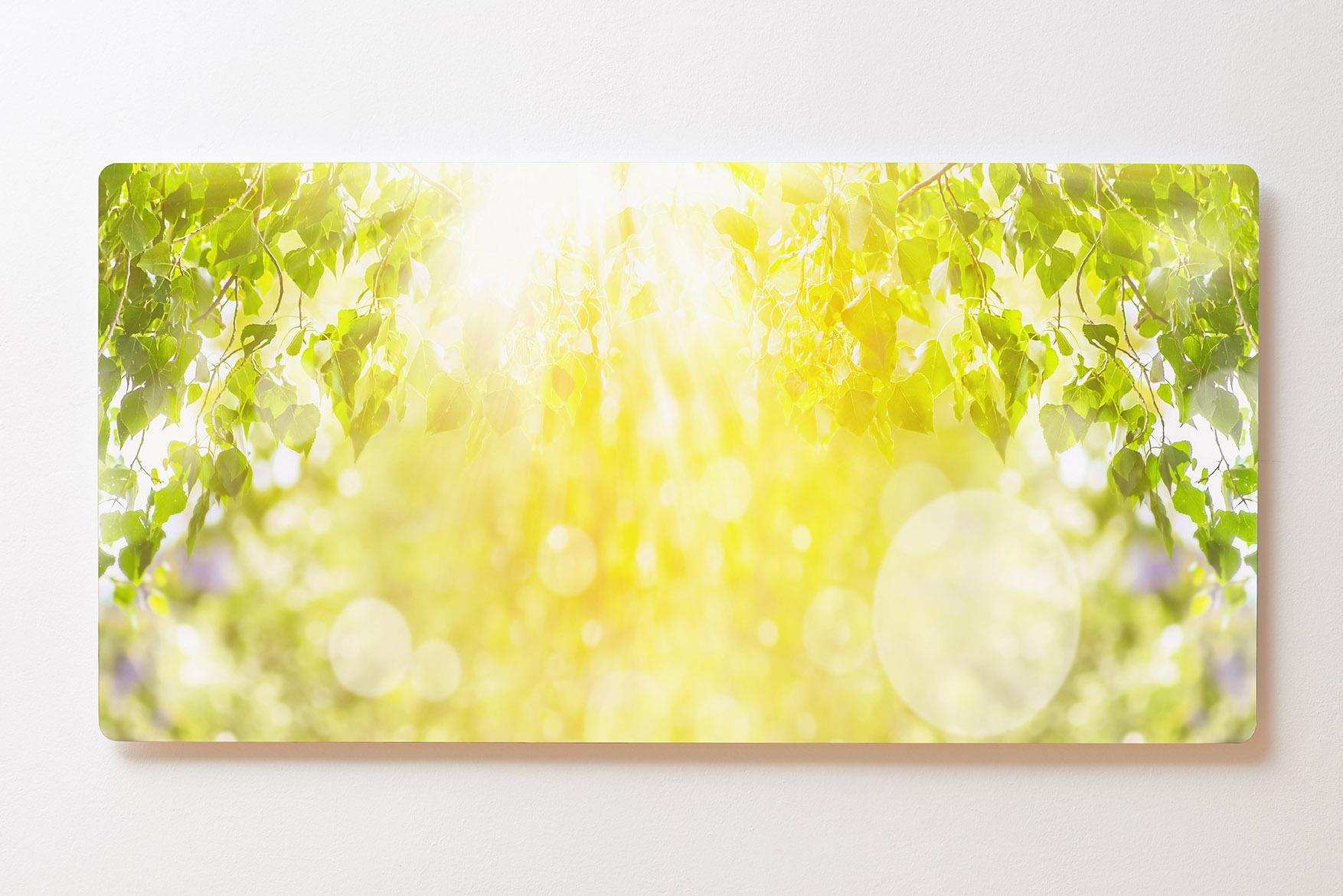 Magnettafel BACKLIGHT 120x60cm Motiv-Wandbild M113 Sonnenuntergang Bäume