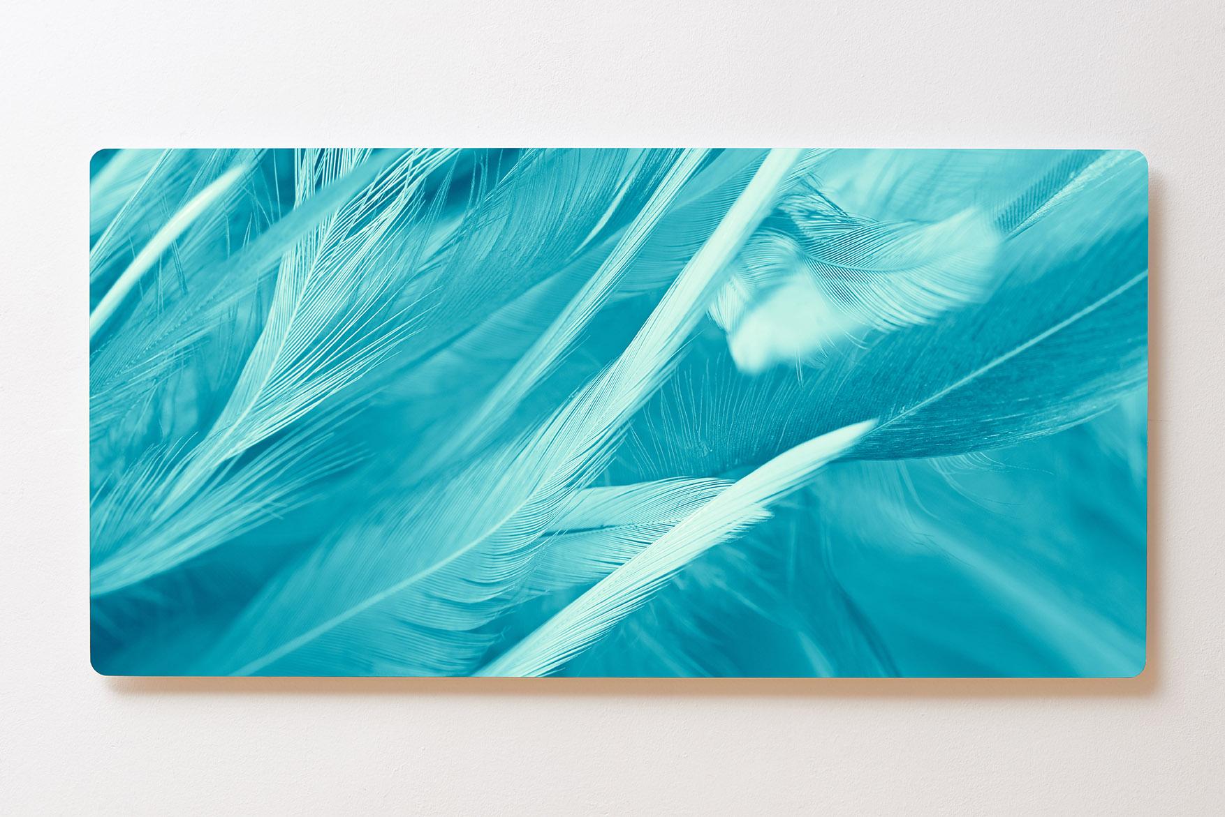 Magnettafel BACKLIGHT 120x60cm Motiv-Wandbild M136 Federn Kunst