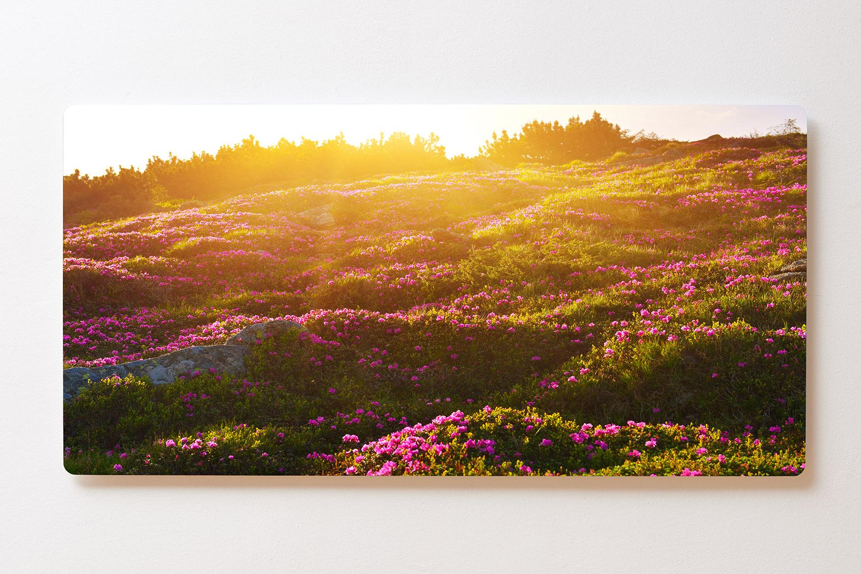 Magnettafel BACKLIGHT 120x60cm Motiv-Wandbild M142 Wiese Berge Sonnenaufgang