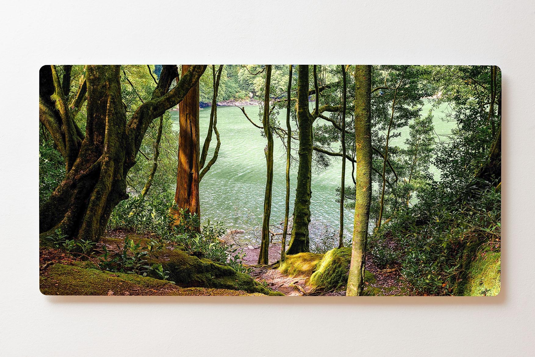 Magnettafel BACKLIGHT 120x60cm Motiv-Wandbild M157 See Wald