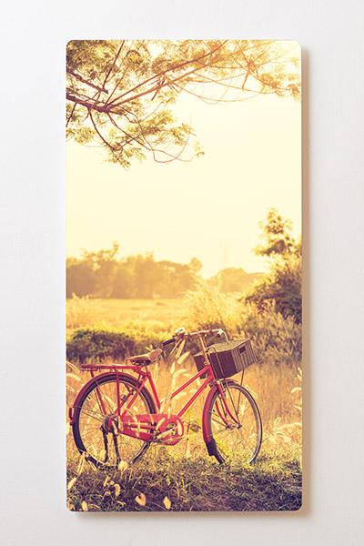 Magnettafel BACKLIGHT 60x120cm Motiv-Wandbild M44 Fahrrad