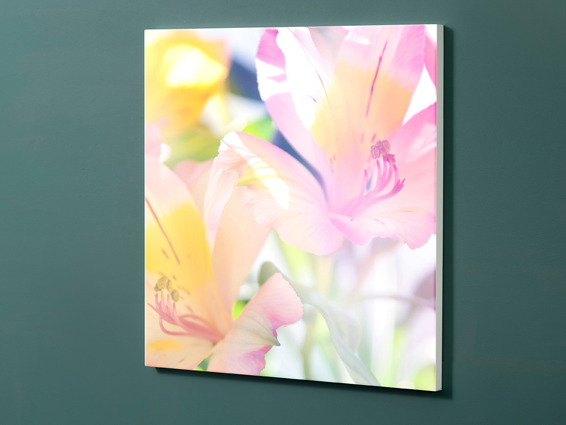 Magnettafel NOTIZ 60x60cm Motiv-Pinnwand M09 Blumen