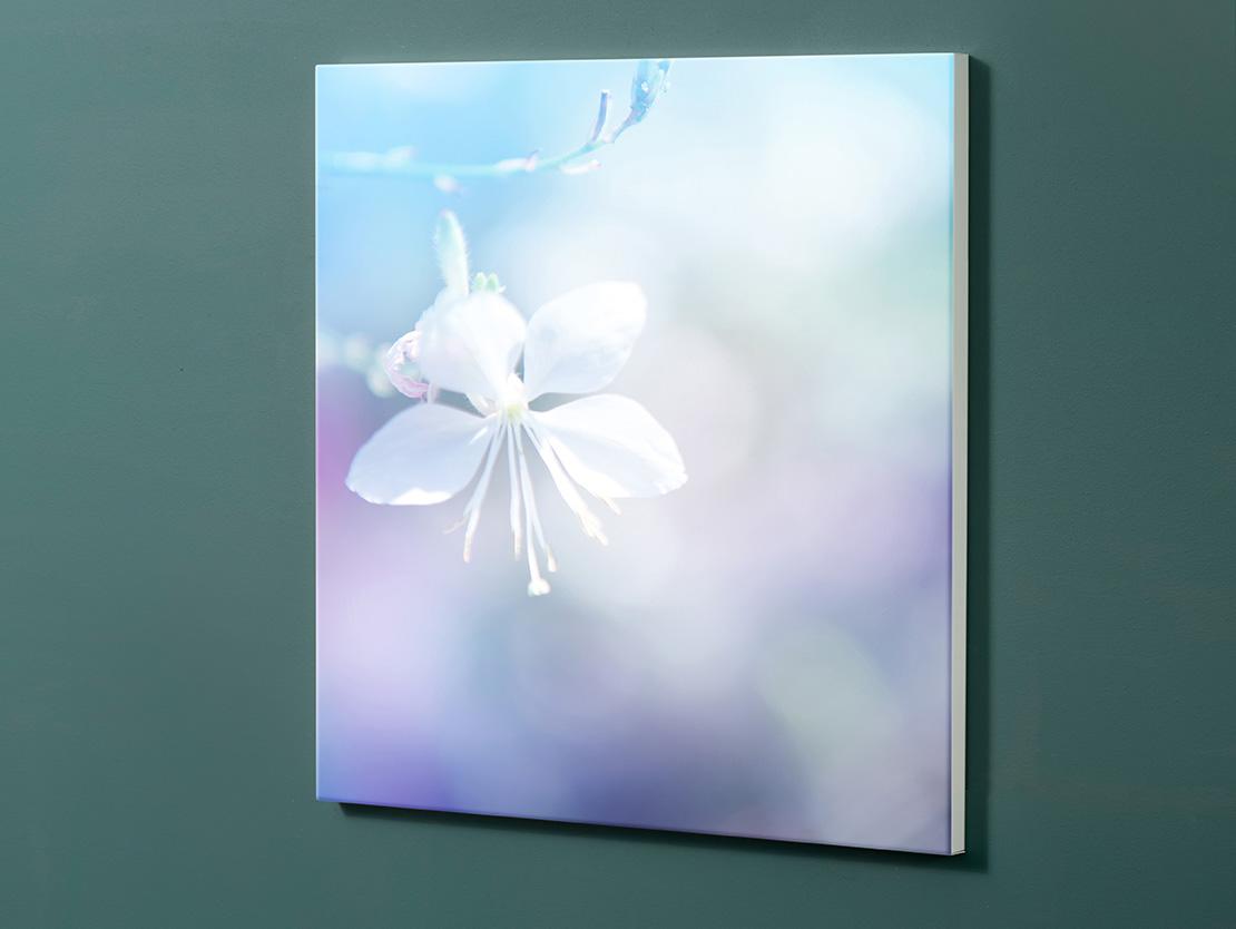 Magnettafel NOTIZ 60x60cm Motiv-Pinnwand M106 Blumen