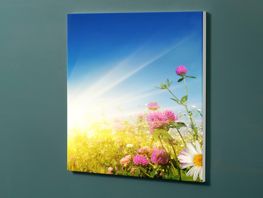 Magnettafel NOTIZ 60x60cm Motiv-Pinnwand M11 Wiese Blumen