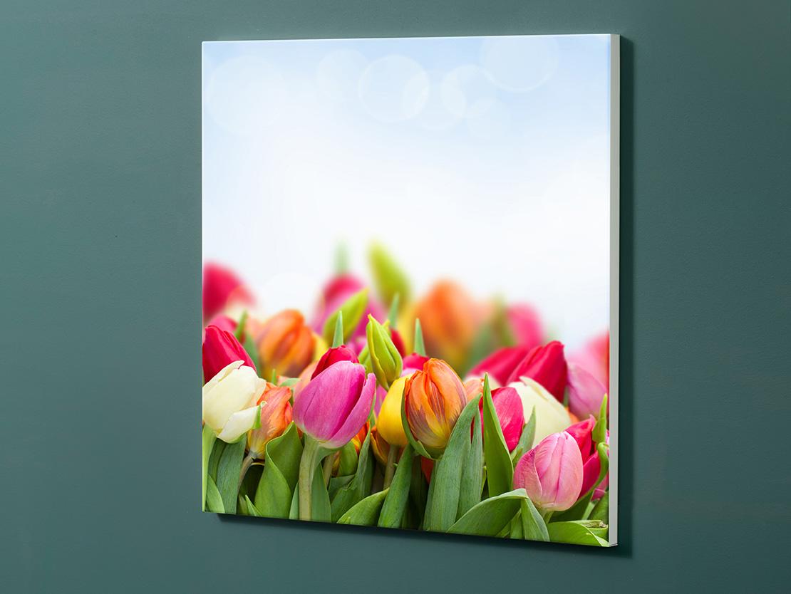 Magnettafel NOTIZ 60x60cm Motiv-Pinnwand M127 Tulpen