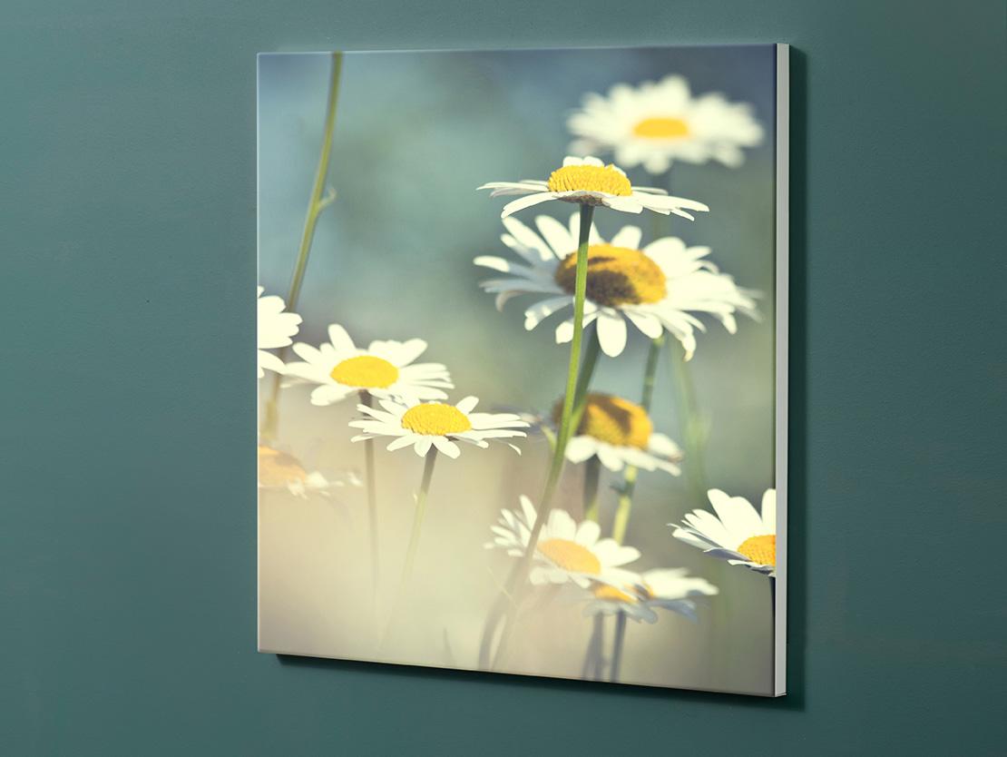 Magnettafel NOTIZ 60x60cm Motiv-Pinnwand M149 Blumen