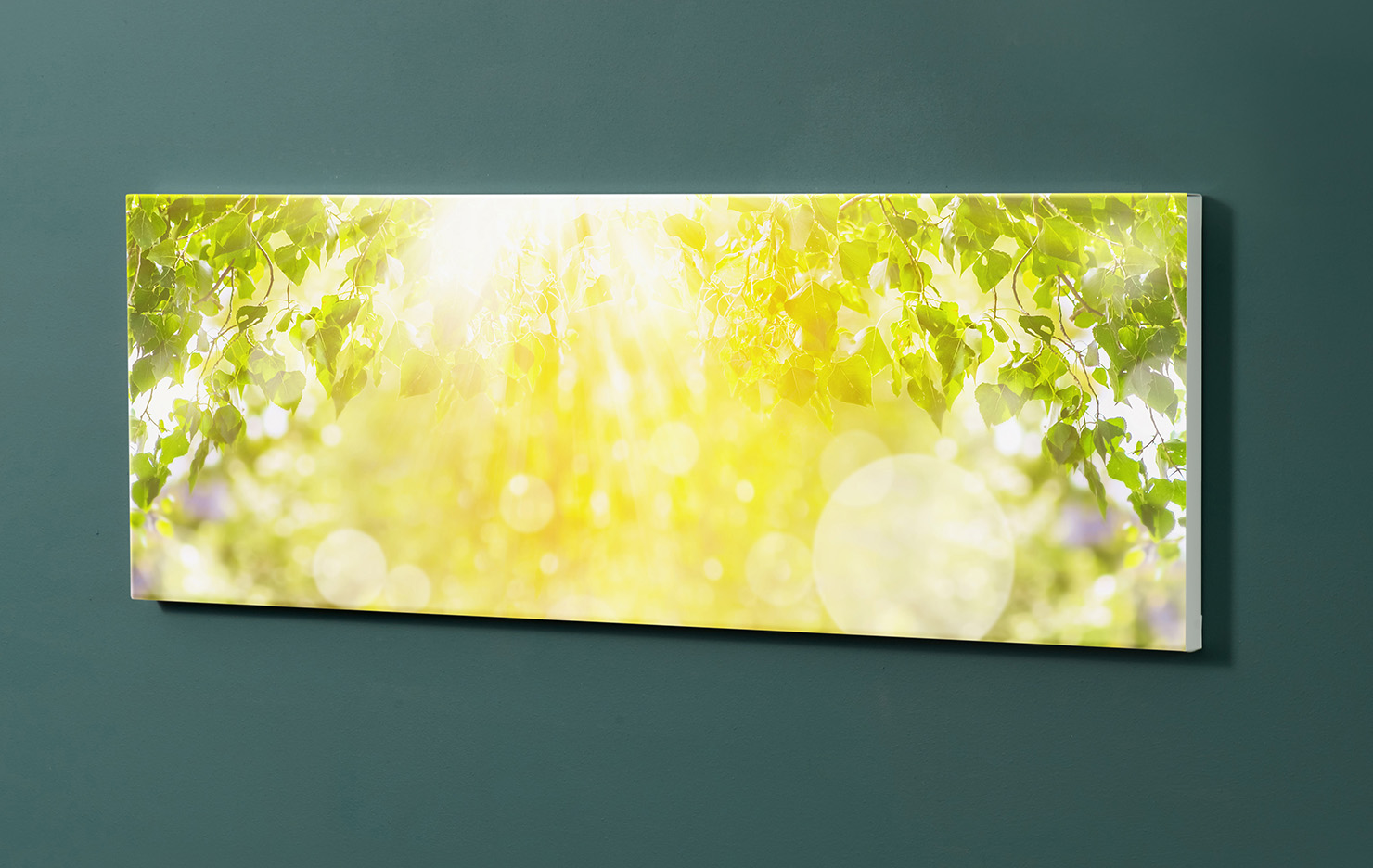 Magnettafel NOTIZ 90x30cm Motiv-Pinnwand M120 Bäume