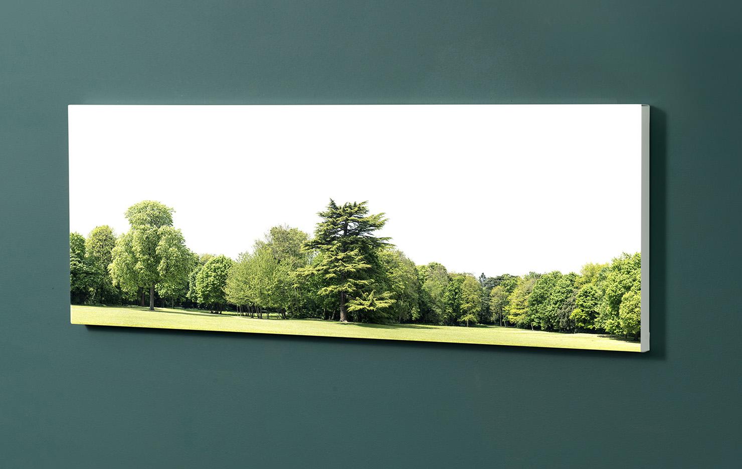 Magnettafel NOTIZ 90x30cm Motiv-Pinnwand M147 Wald