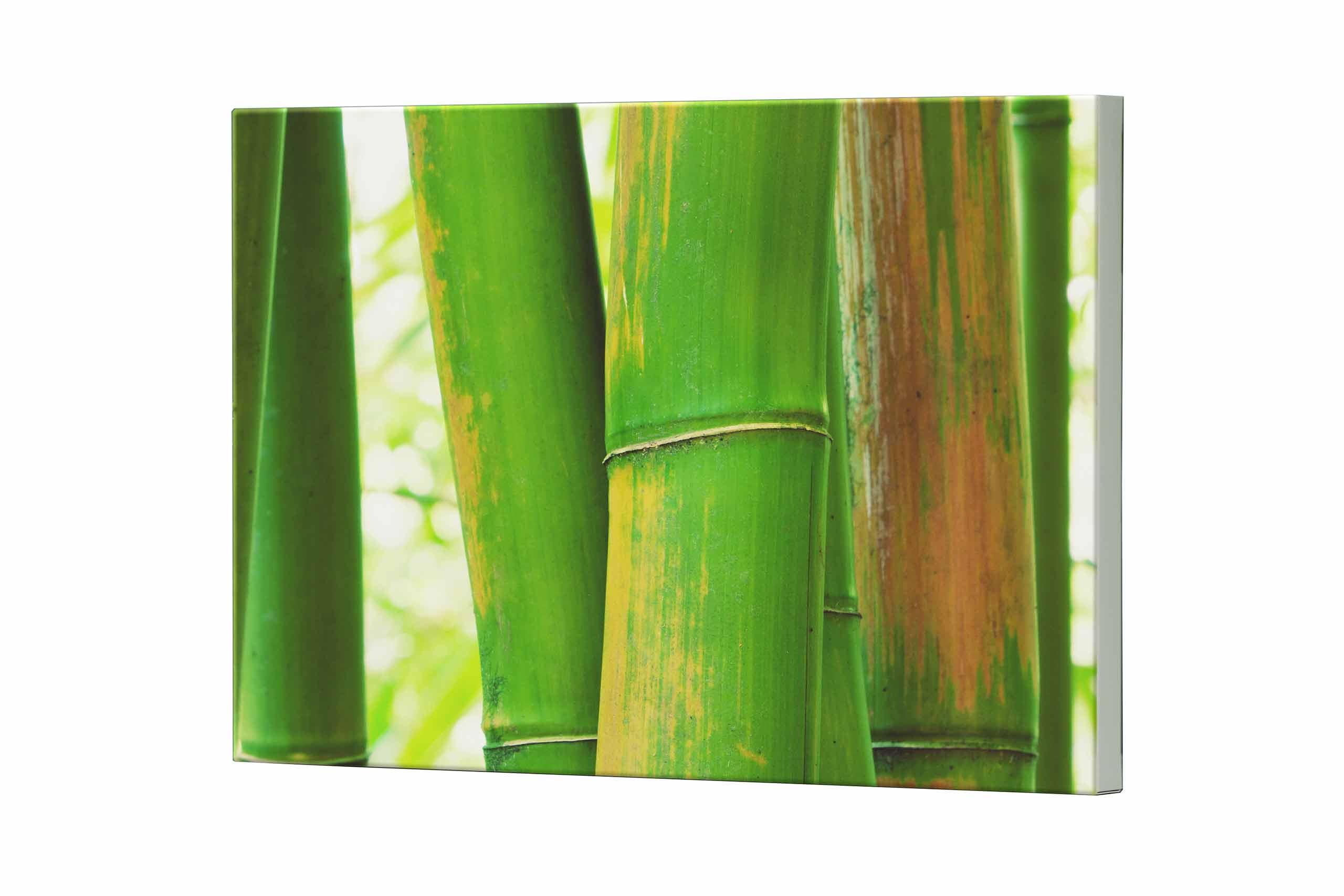 Magnettafel NOTIZ 80x60cm Motiv Bambus MDQ146 Motiv-Pinnwand