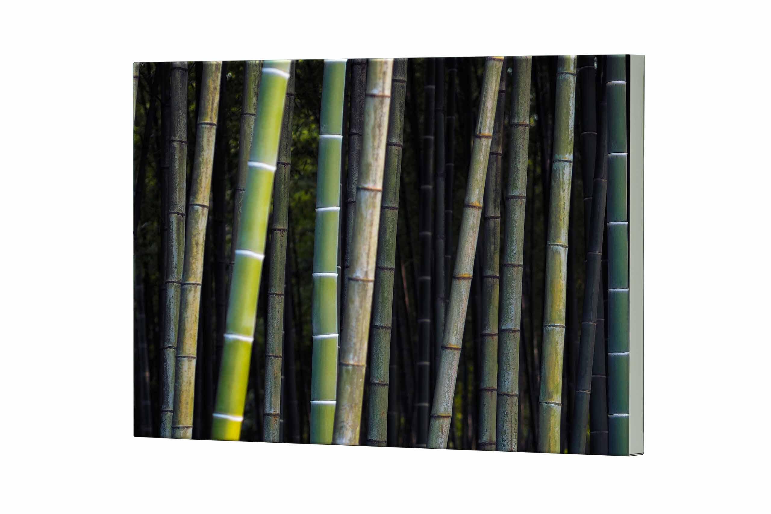 Magnettafel NOTIZ 80x60cm Motiv Bambus MDQ261 Motiv-Pinnwand