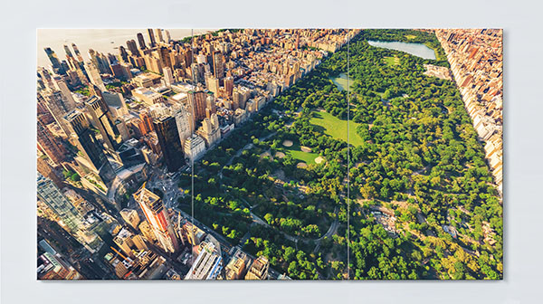 Magnettafel NOTIZ 120x60cm Motiv Central Park MP63 Motiv-Pinnwand