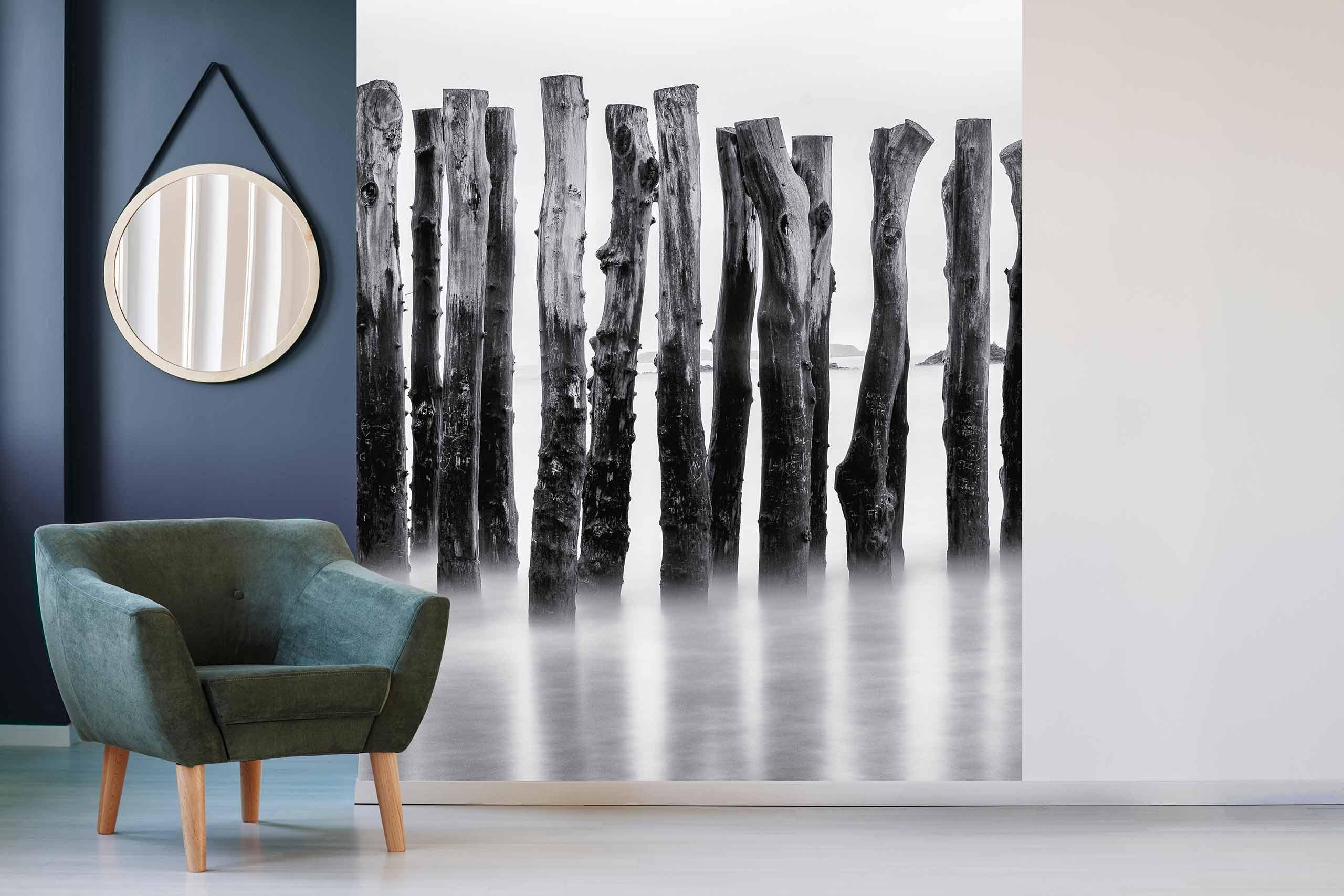 Vlies Tapete 225 Fototapete Höhe 250cm Motiv 117 See Schwarz-Weiß
