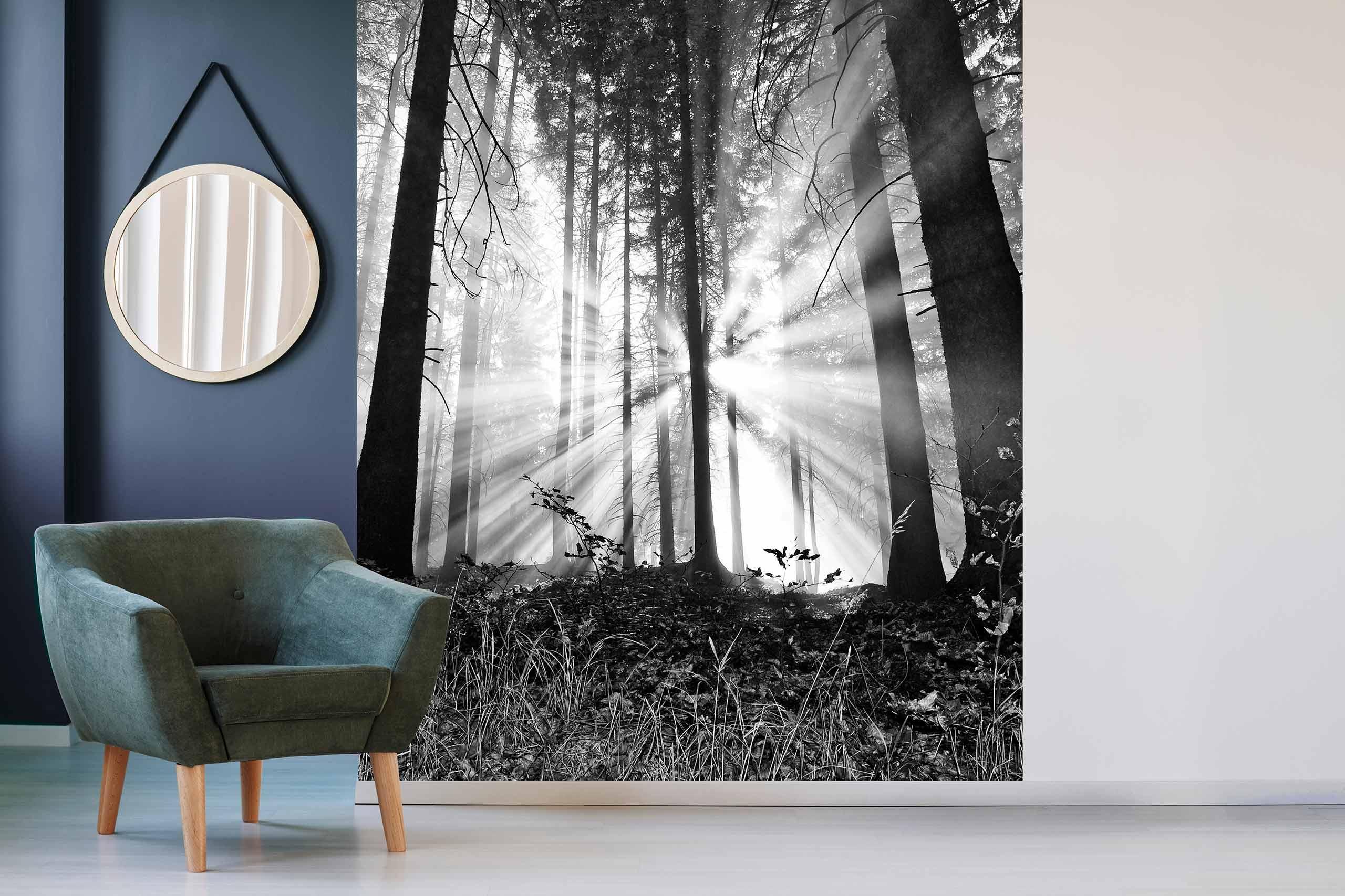 Vlies Tapete 225 Fototapete Höhe 250cm Motiv 14 Wald Schwarz-Weiß
