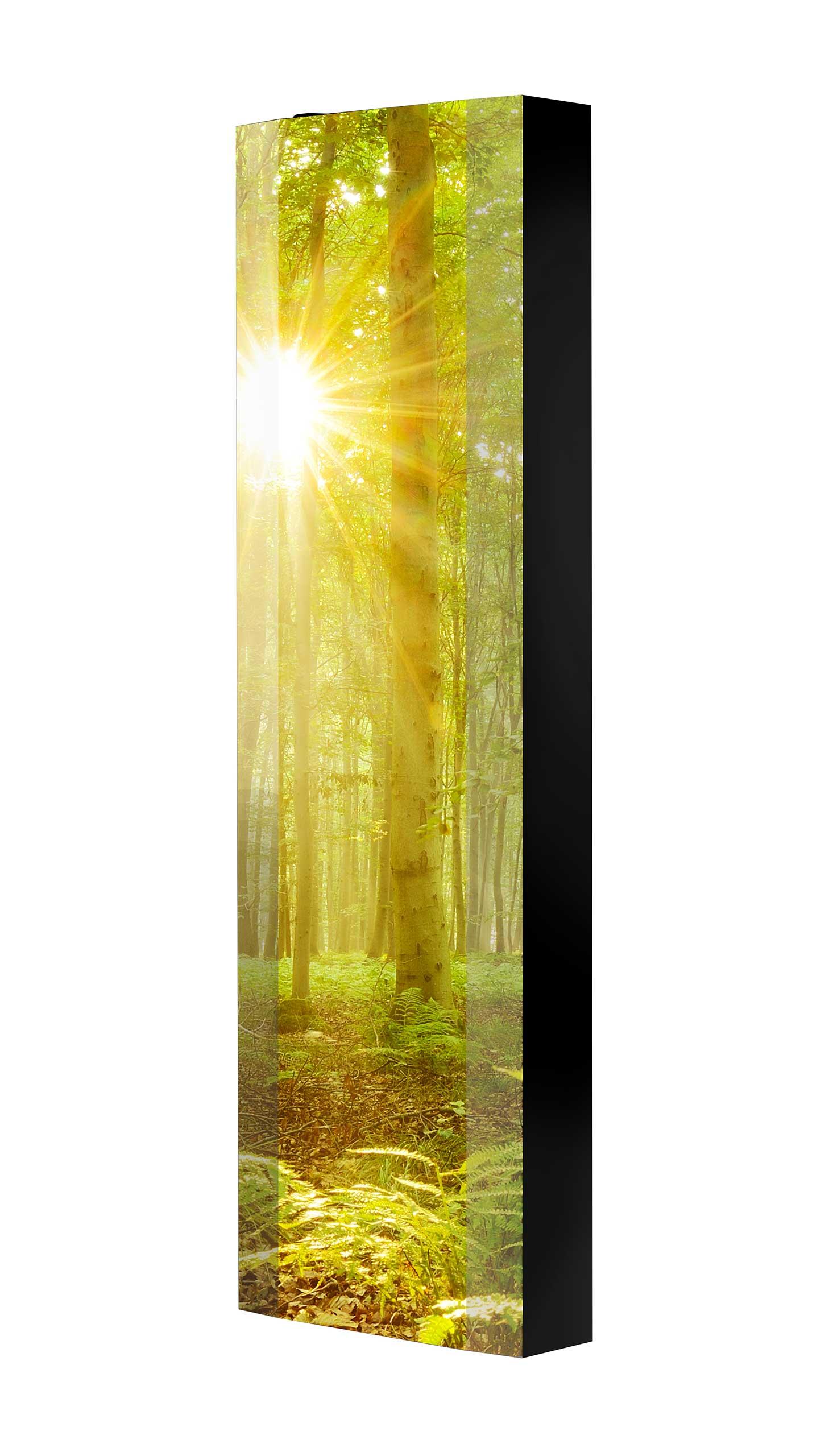 Schuhschrank FLASH 450 BLACK-EDITION Motivschrank schwarz drehbar M112 Wald Bäume