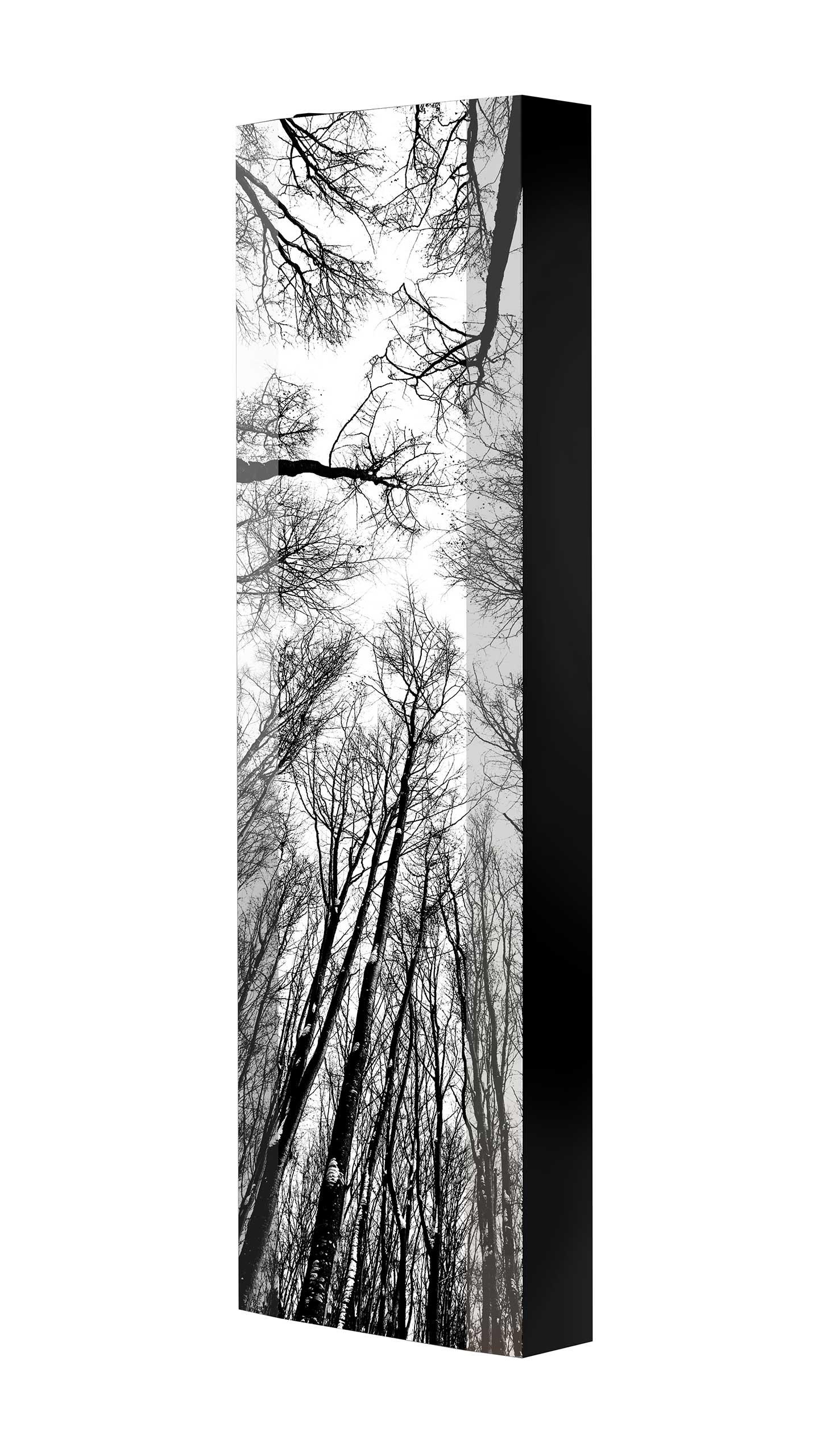 Schuhschrank FLASH 450 BLACK-EDITION Motivschrank schwarz drehbar M11 Wald Schwarz-Weiß