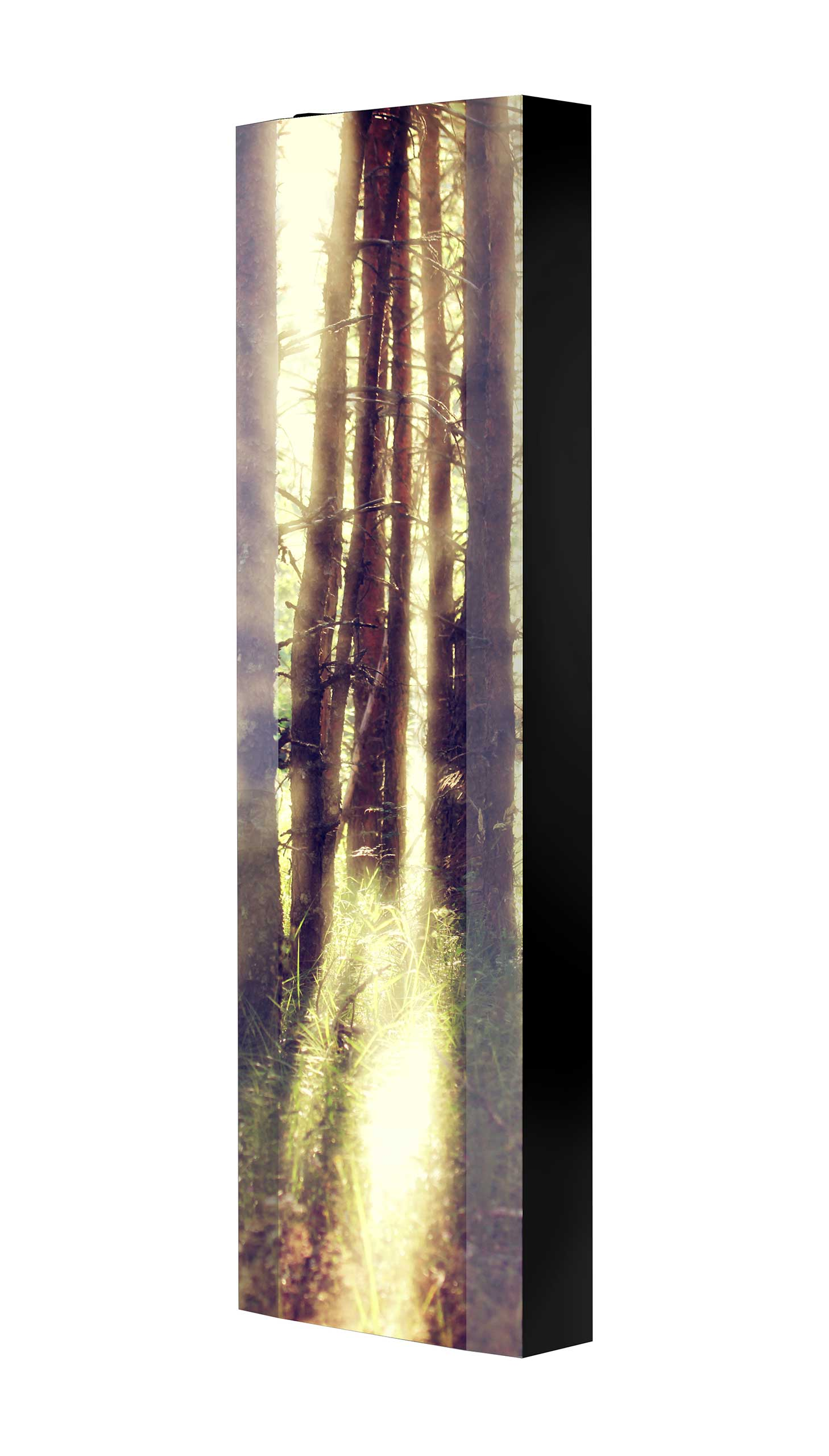 Schuhschrank FLASH 450 BLACK-EDITION Motivschrank schwarz drehbar M16 Wald Bäume