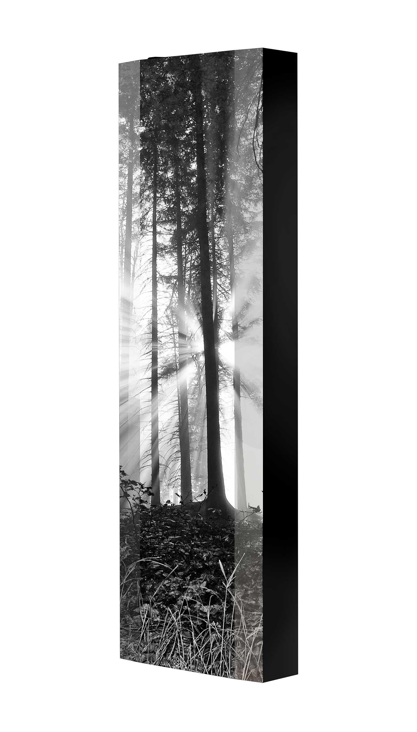 Schuhschrank FLASH 450 BLACK-EDITION Motivschrank schwarz drehbar M19 Wald Schwarz-Weiß