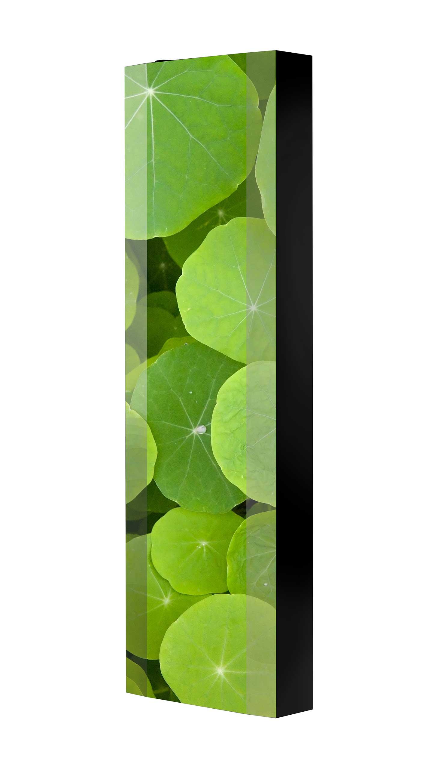 Schuhschrank FLASH 450 BLACK-EDITION Motivschrank schwarz drehbar M21 Blumen
