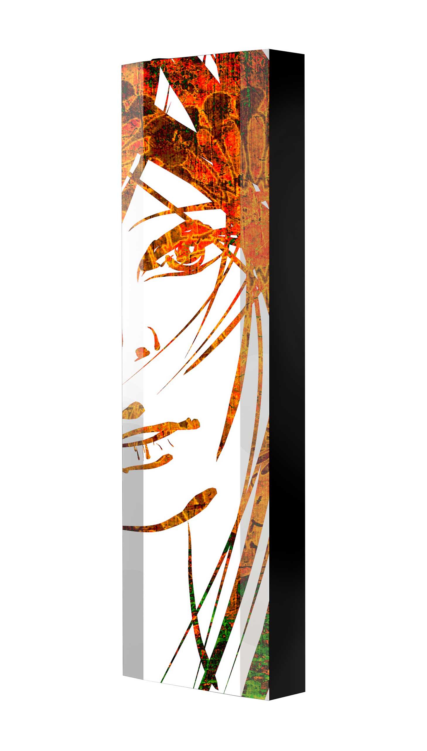 Schuhschrank FLASH 450 BLACK-EDITION Motivschrank schwarz drehbar M23 Kunst Gemälde