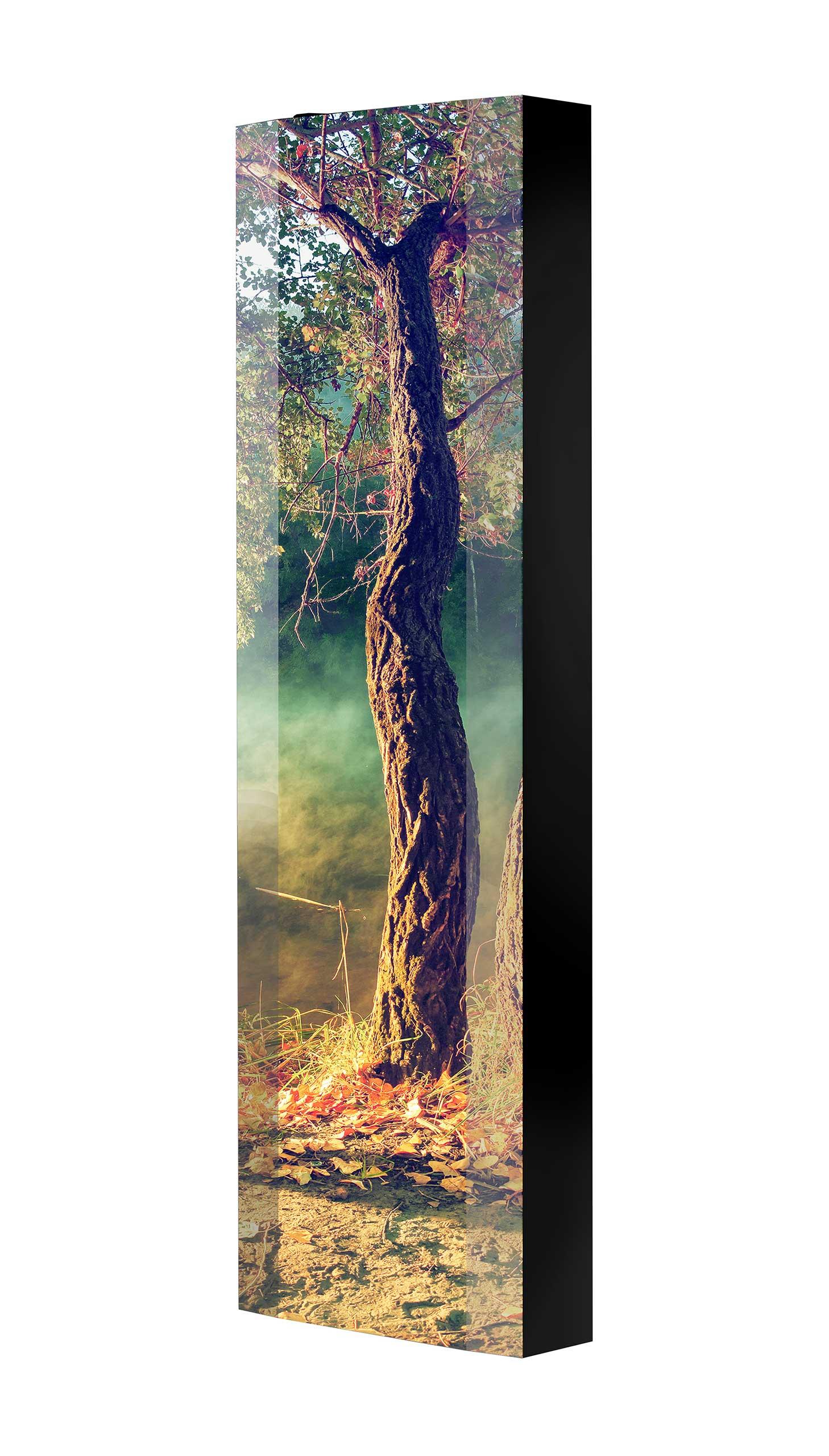 Schuhschrank FLASH 450 BLACK-EDITION Motivschrank schwarz drehbar M30 Baum See