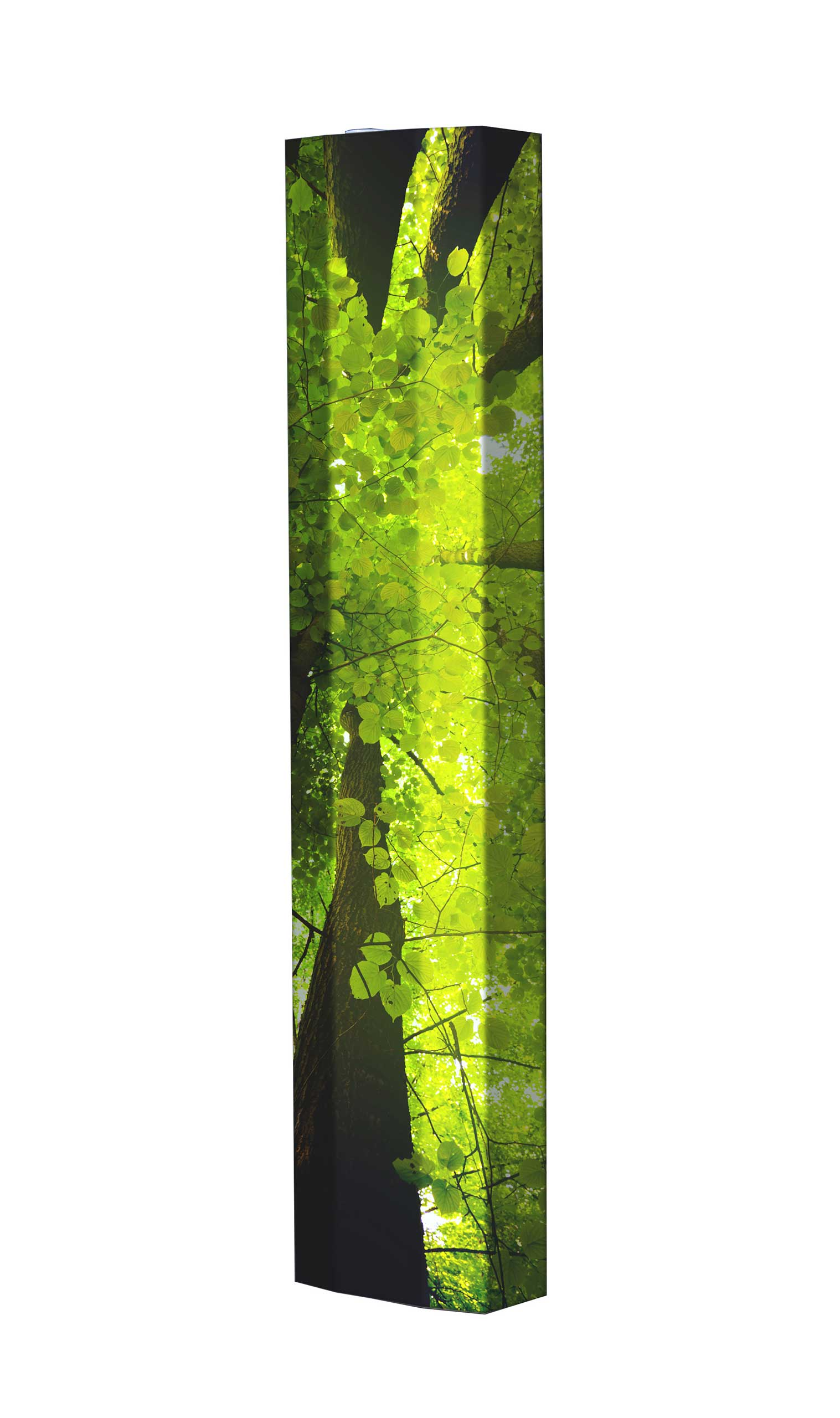 Schuhschrank STORM Motivschrank Single S11 Wald weiß